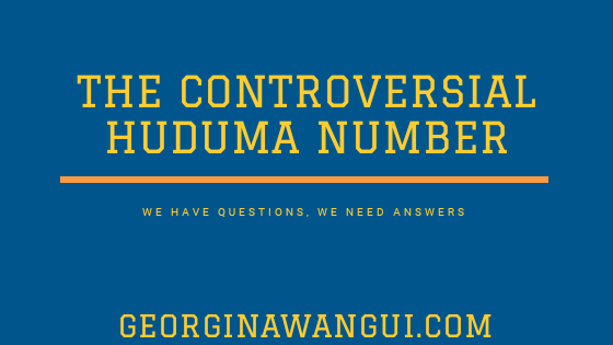 QUESTIONS WE NEED ANSWERS TO: HUDUMA NUMBER